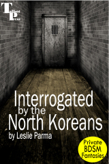 Interrogated by the North Koreans
